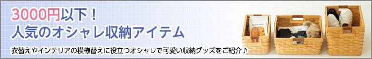3000�~�ȉ��I�l�C�̃I�V������[�A�C�e��