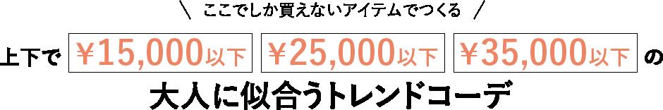 ここでしか買えないアイテムでつくる 上下で¥15,000以下、¥25,000以下、¥35,000以下の大人に似合うトレンドコーデ