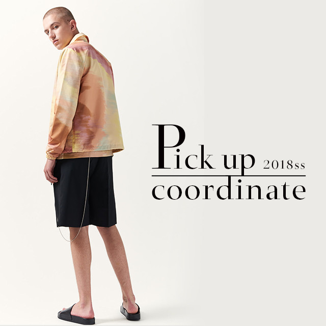 2018SS Pick up cordinate